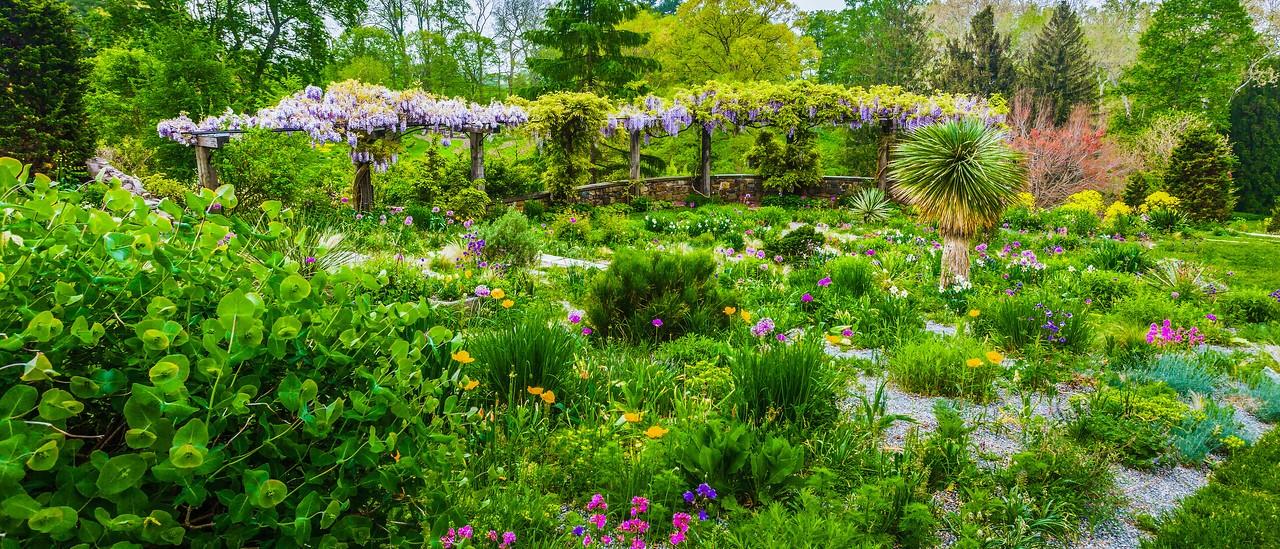 Chanticleer花园,春天气息_图1-8
