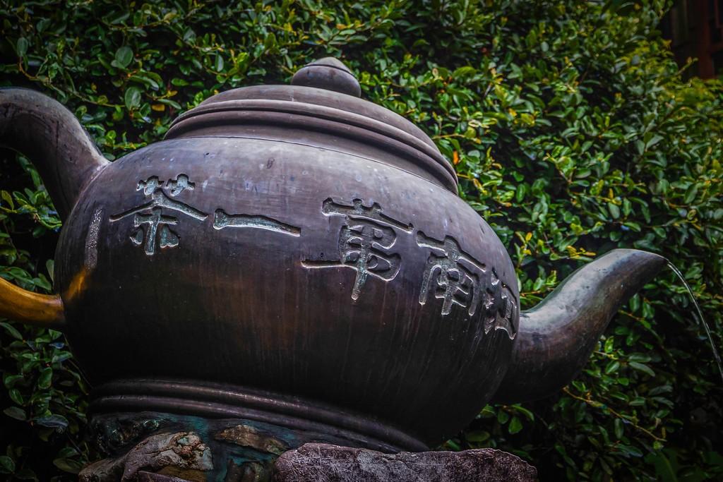杭州虎跑,一处幽静传奇的景点_图1-8