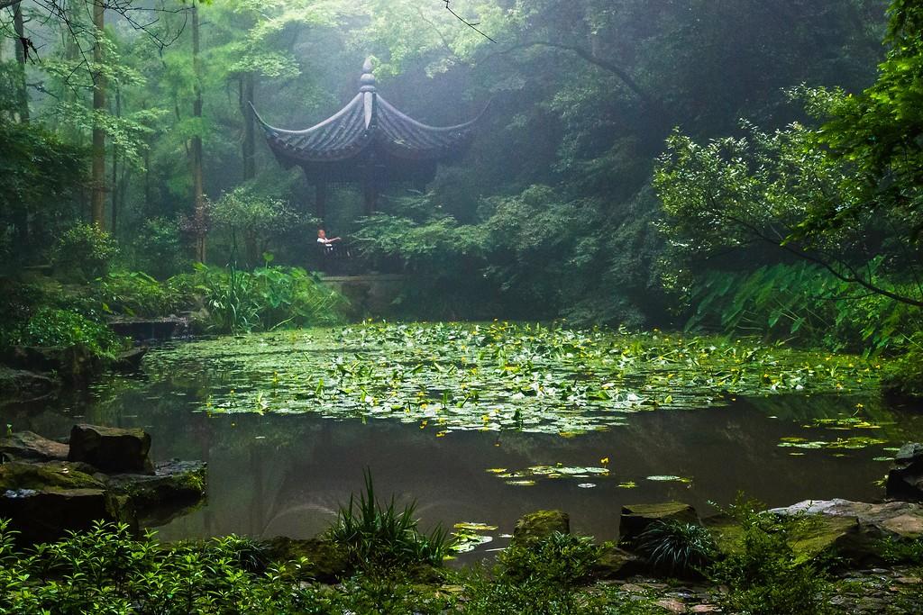 杭州虎跑,一处幽静传奇的景点_图1-1