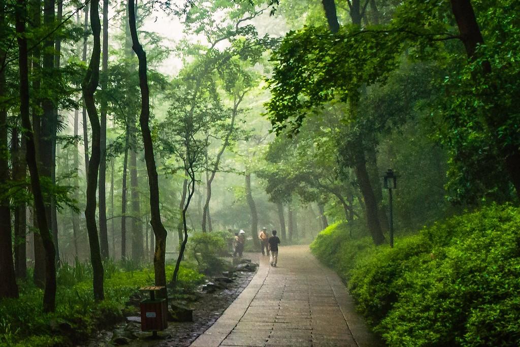 杭州虎跑,一处幽静传奇的景点_图1-7