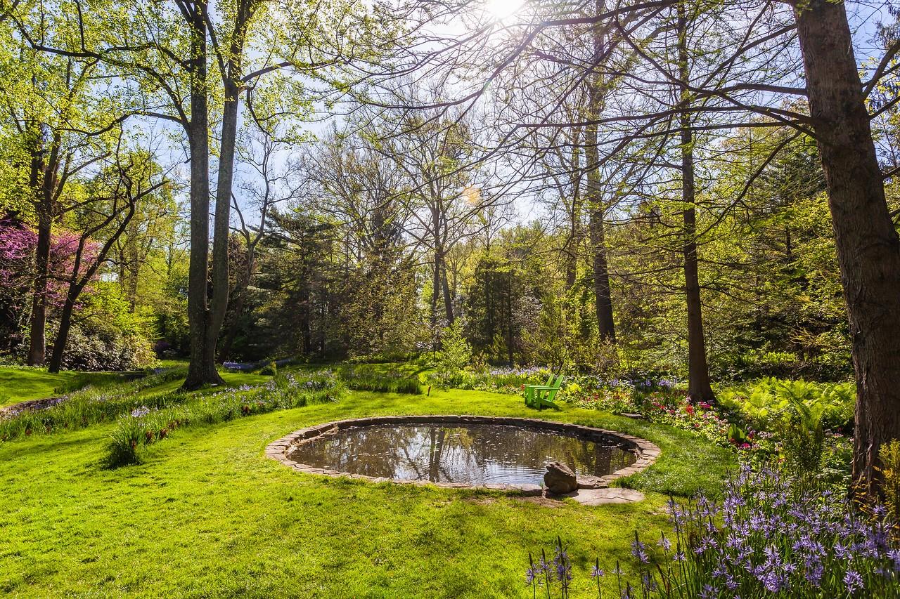 Chanticleer花园,春天的阳光_图1-14