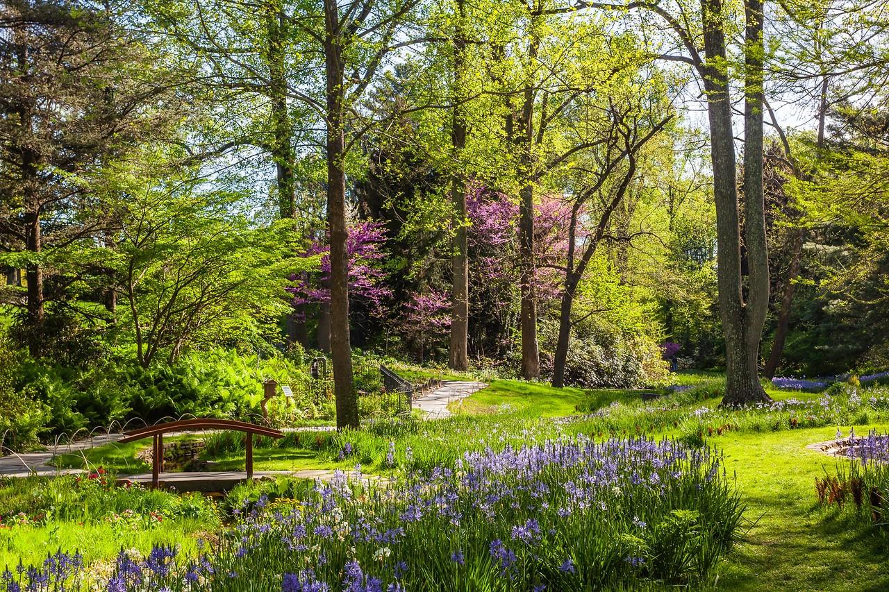 Chanticleer花园,春天的阳光_图1-12