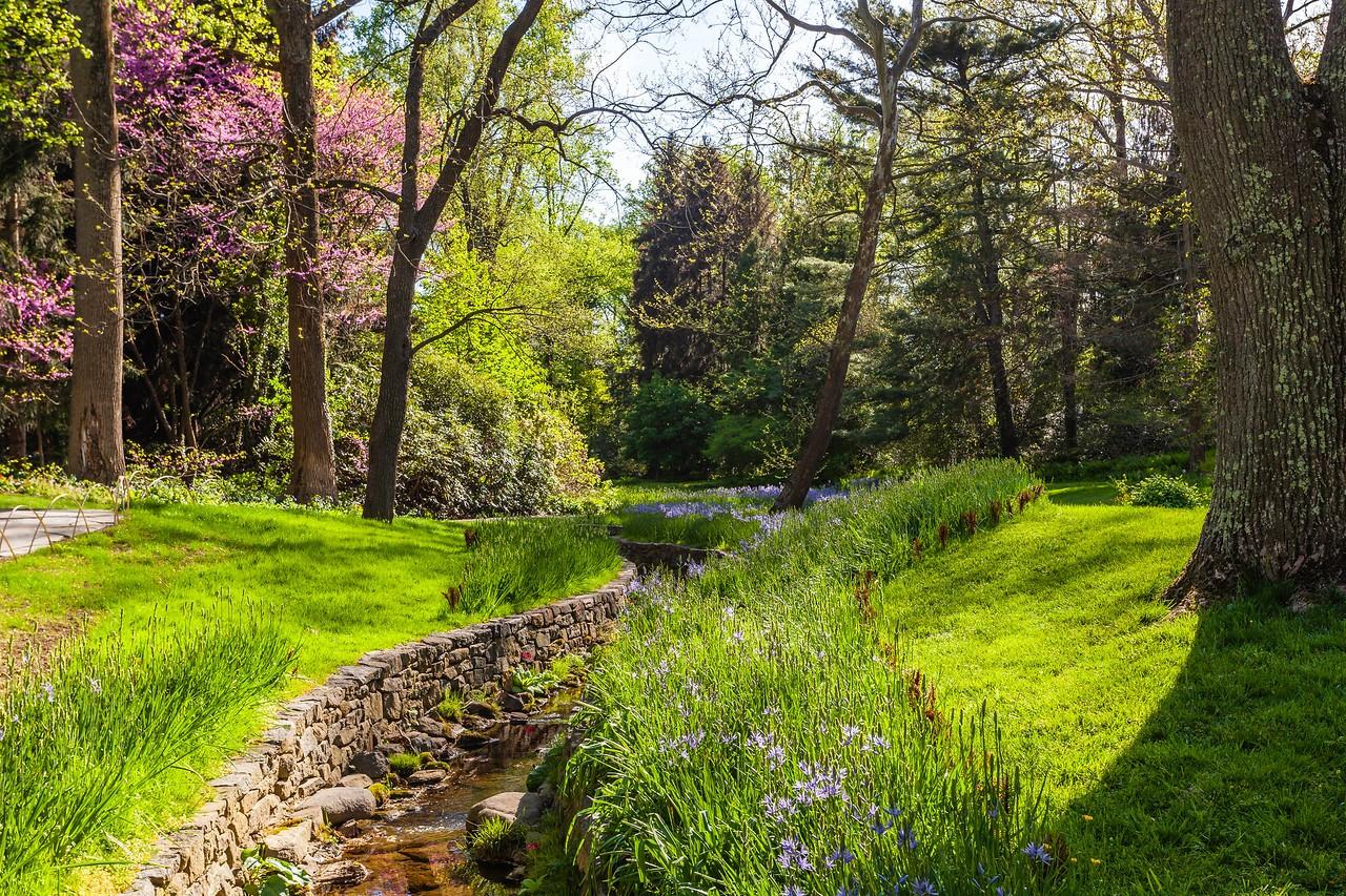 Chanticleer花园,春天的阳光_图1-13
