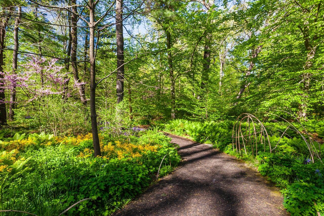 Chanticleer花园,春天的阳光_图1-10
