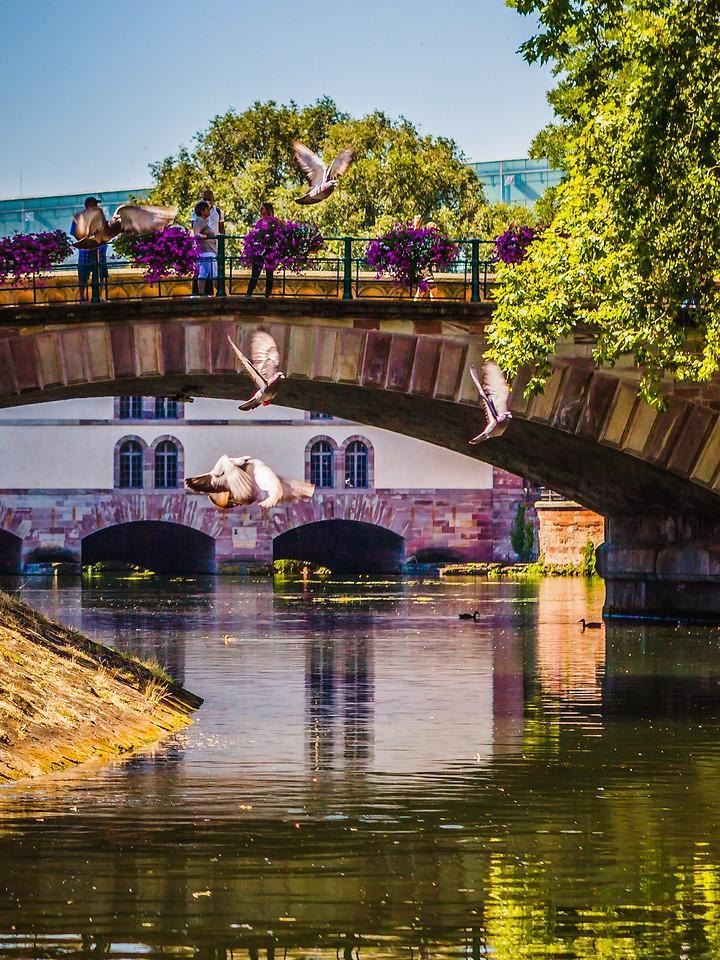 法国斯特拉斯堡(Strasbourg),城市融合_图1-8