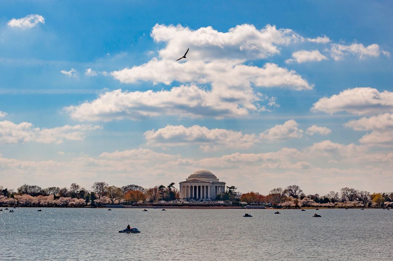 美国华盛顿,地标景点_图1-7