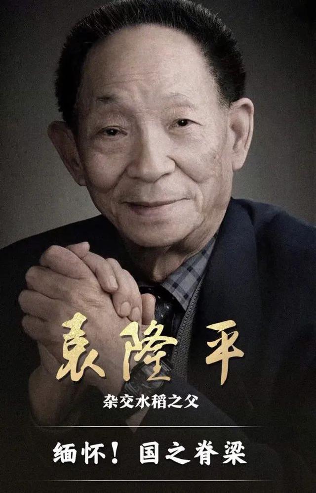 """缅怀""""杂交水稻之父""""袁隆平院士(七律三首)_图1-1"""