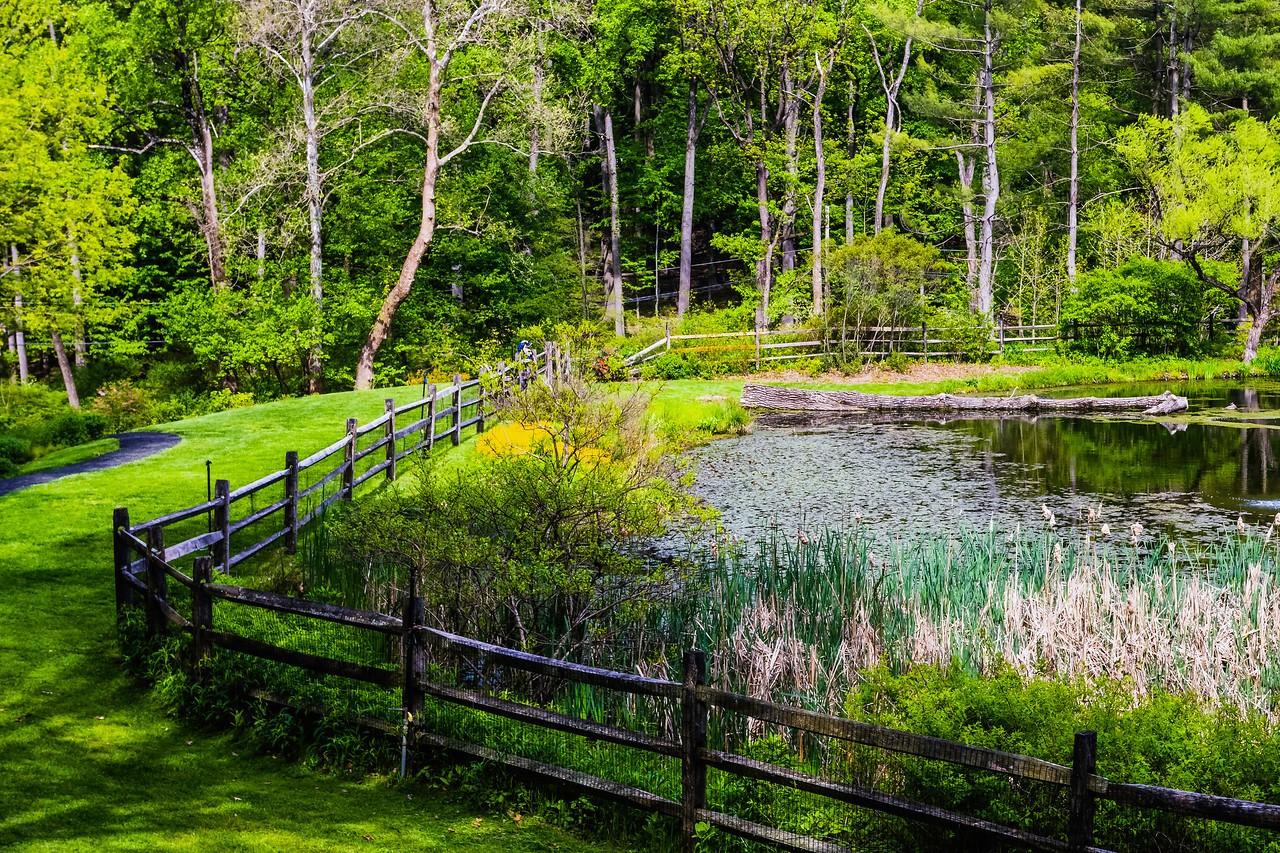 滨州詹金斯植物园(Jenkins Arboretum),景色宜人_图1-10