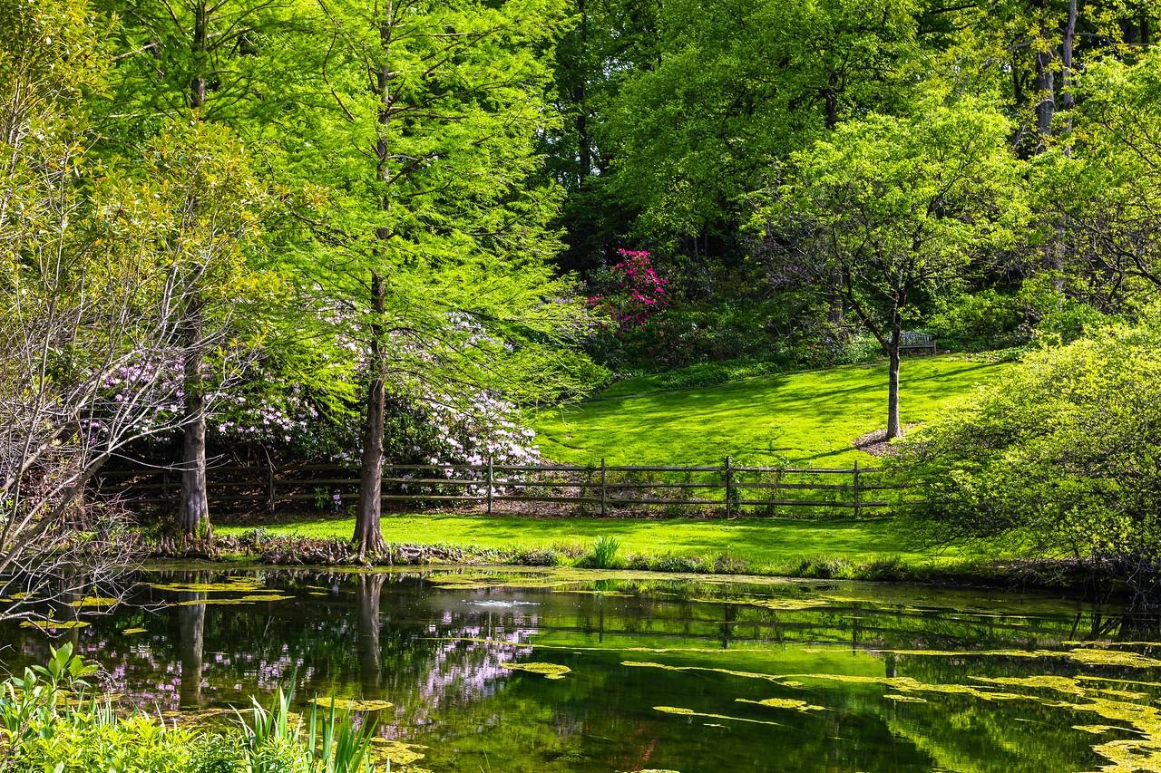 滨州詹金斯植物园(Jenkins Arboretum),景色宜人_图1-11