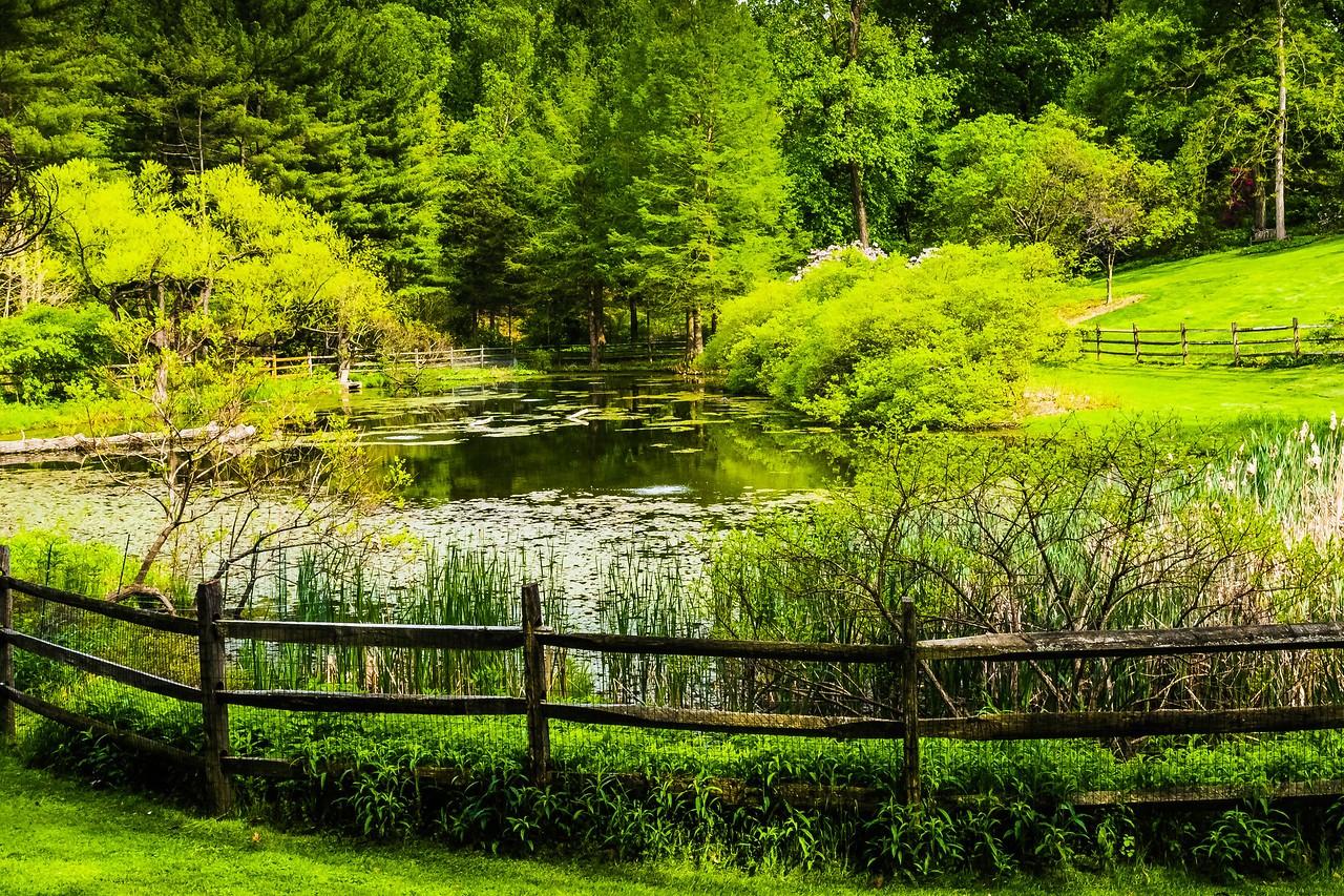 滨州詹金斯植物园(Jenkins Arboretum),景色宜人_图1-6