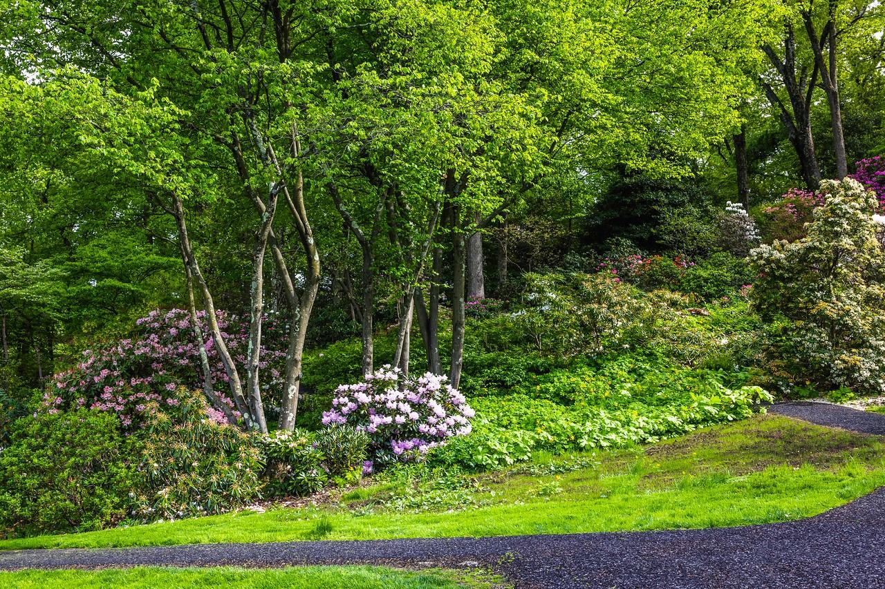 滨州詹金斯植物园(Jenkins Arboretum),景色宜人_图1-7