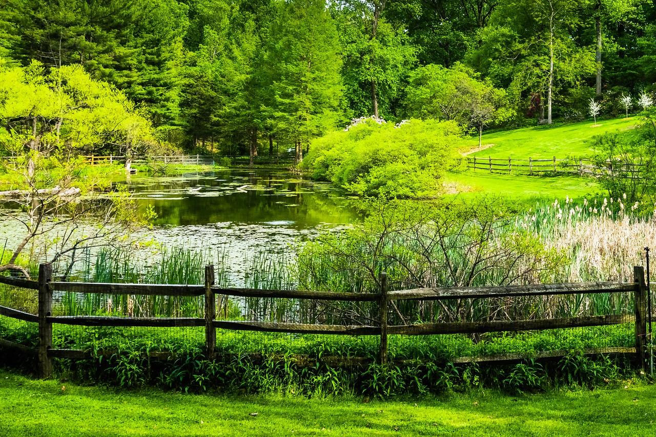 滨州詹金斯植物园(Jenkins Arboretum),景色宜人_图1-8