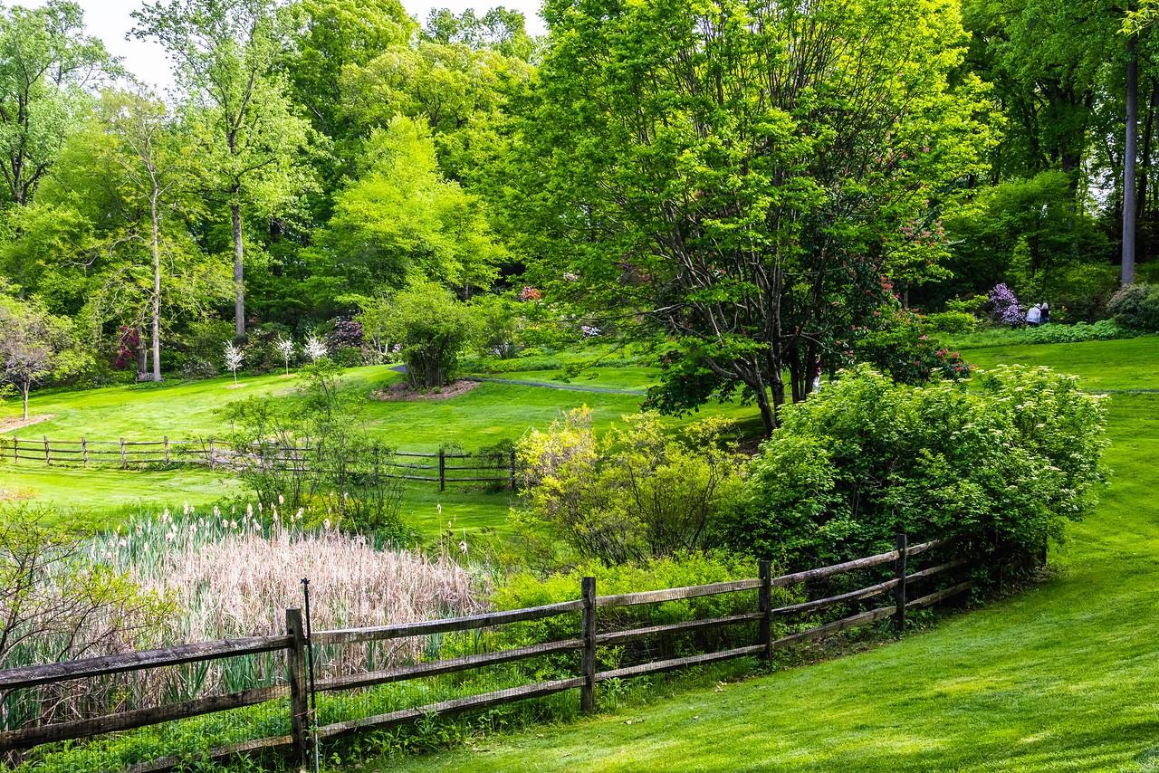滨州詹金斯植物园(Jenkins Arboretum),景色宜人_图1-1