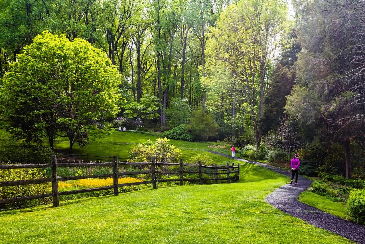 滨州詹金斯植物园(Jenkins Arboretum),景色宜人_图1-3