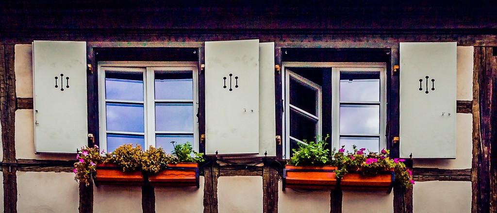 法国科尔马(Colmar),花园城市_图1-16