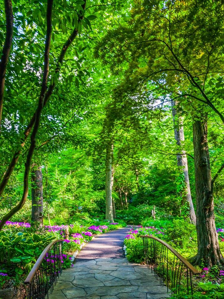 Chanticleer花园,春天的脚步_图1-4