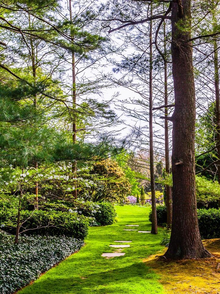 Chanticleer花园,春天的脚步_图1-15