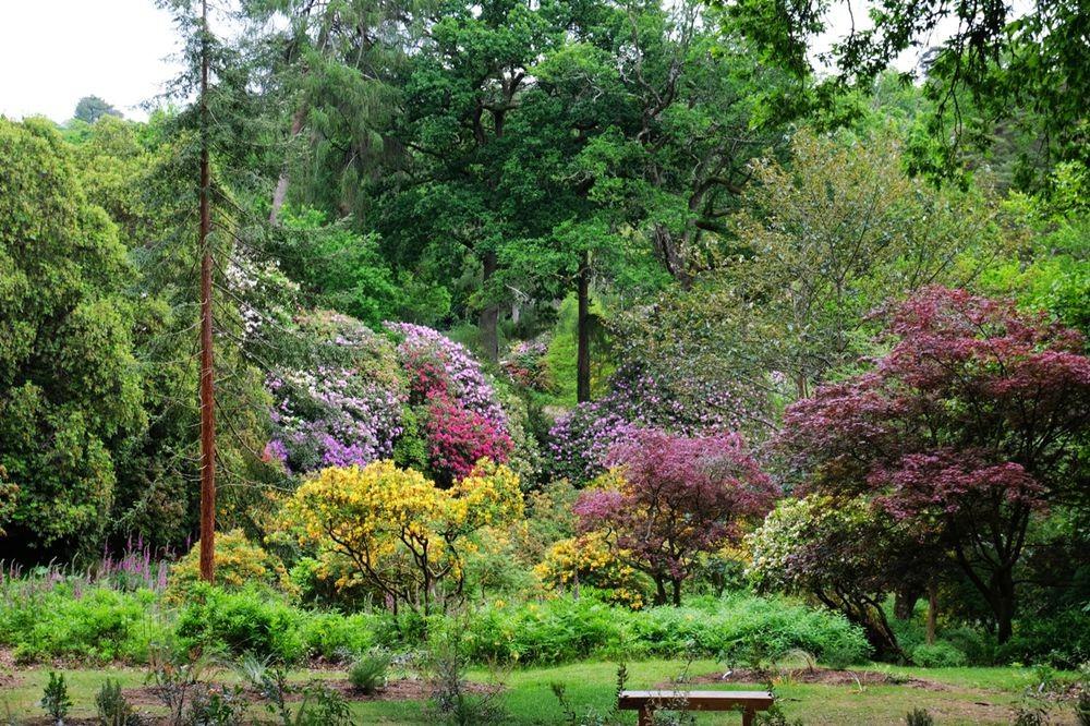莱昂纳德利湖和花园_图1-16