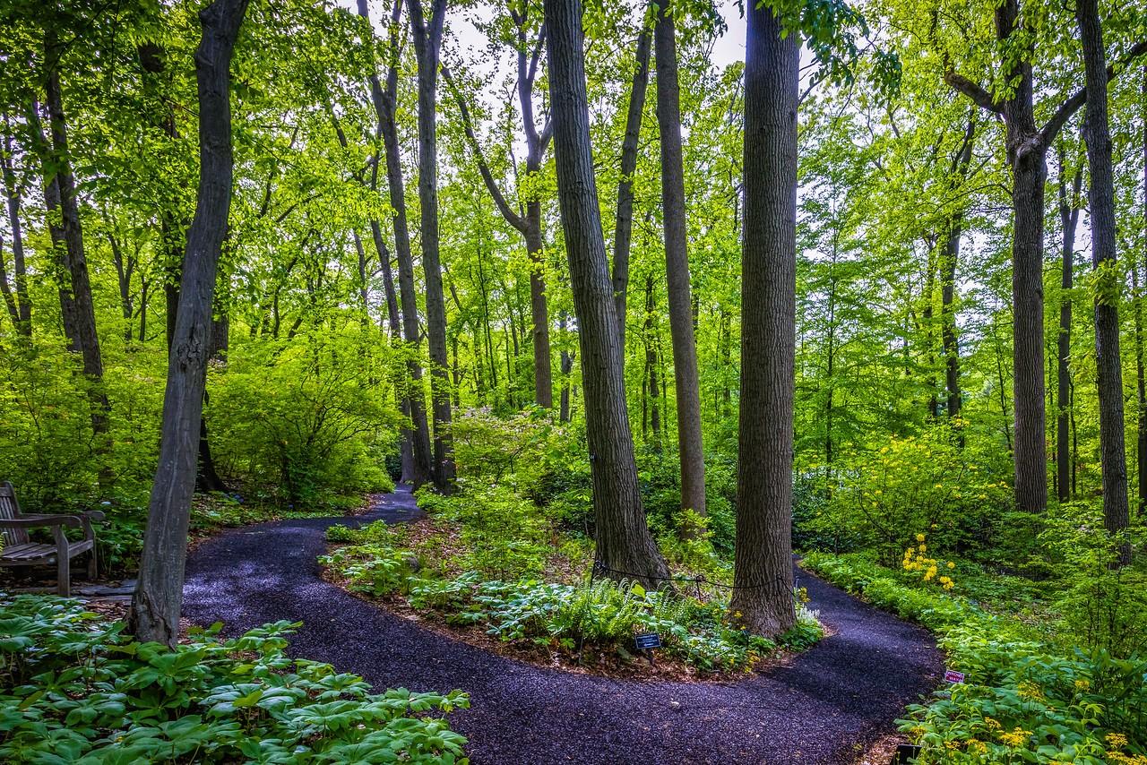 滨州詹金斯植物园(Jenkins Arboretum),美景如画_图1-8