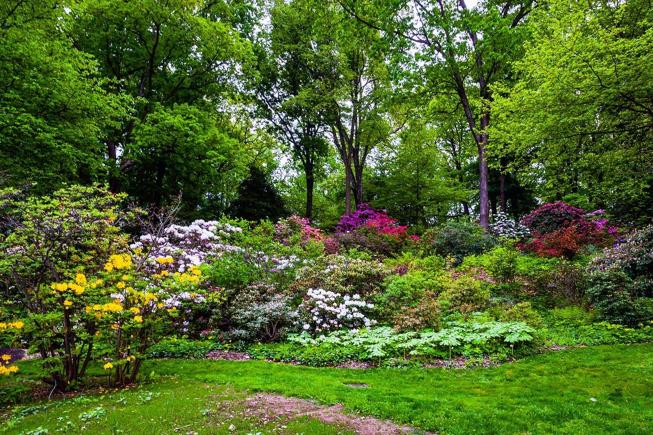 滨州詹金斯植物园(Jenkins Arboretum),美景如画_图1-16