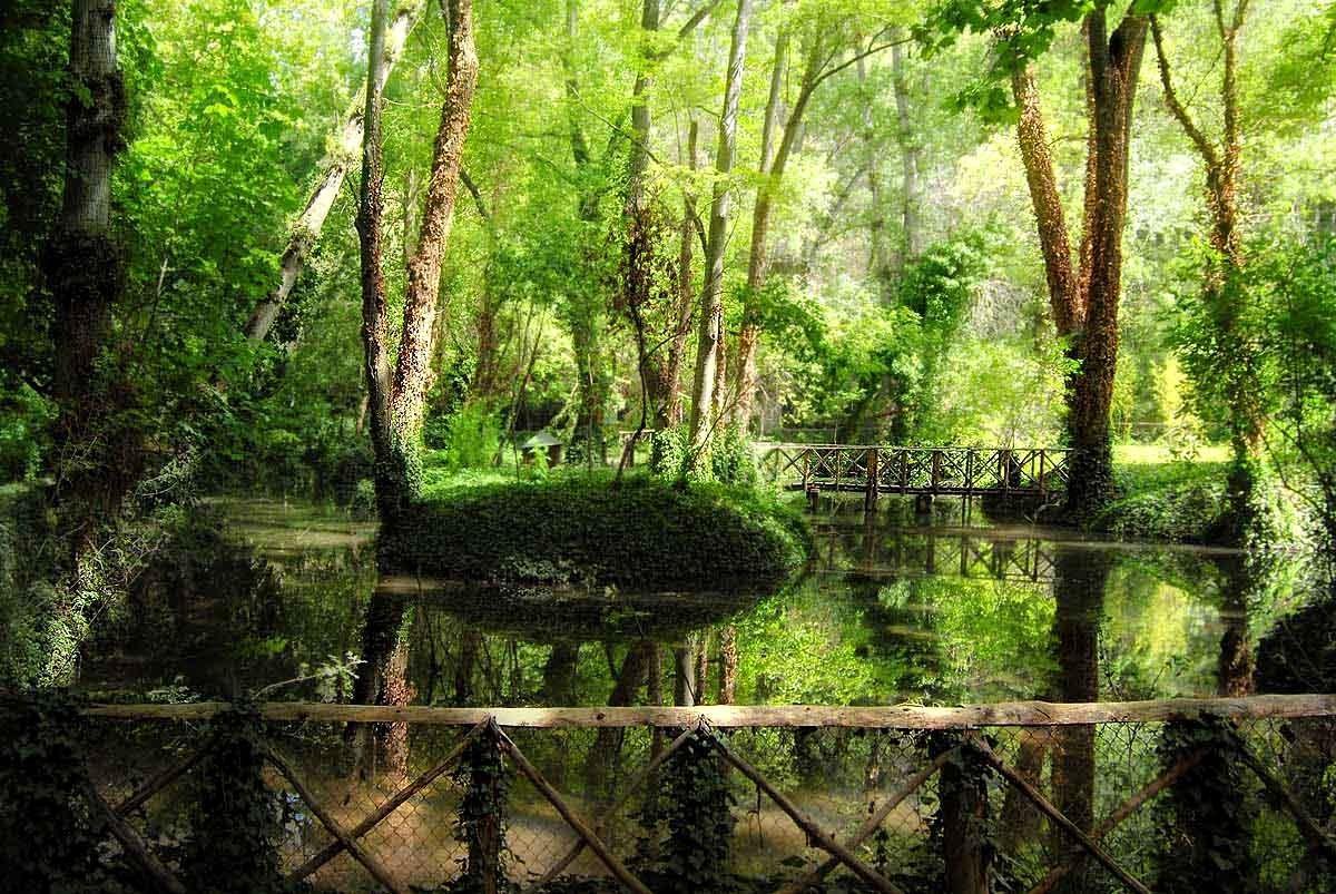 石头修道院自然公园_图1-4