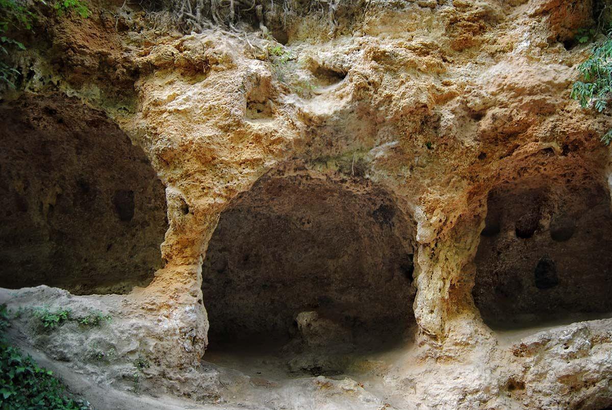 石头修道院自然公园_图1-28