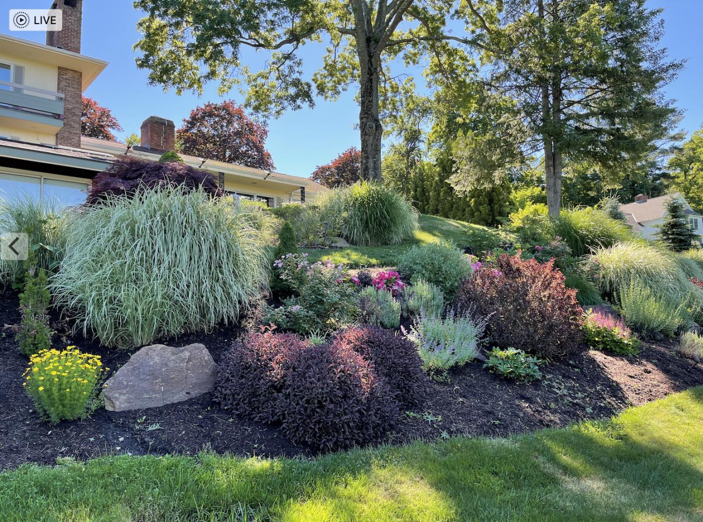 草是自己家的绿,花是自己家的香_图1-8