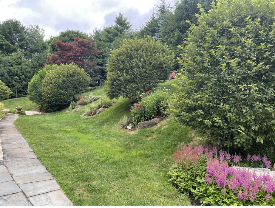 草是自己家的绿,花是自己家的香_图1-36