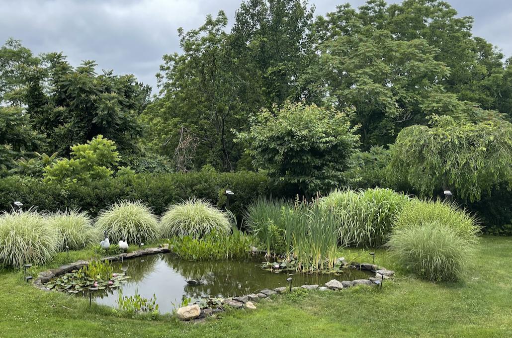 草是自己家的绿,花是自己家的香_图1-38