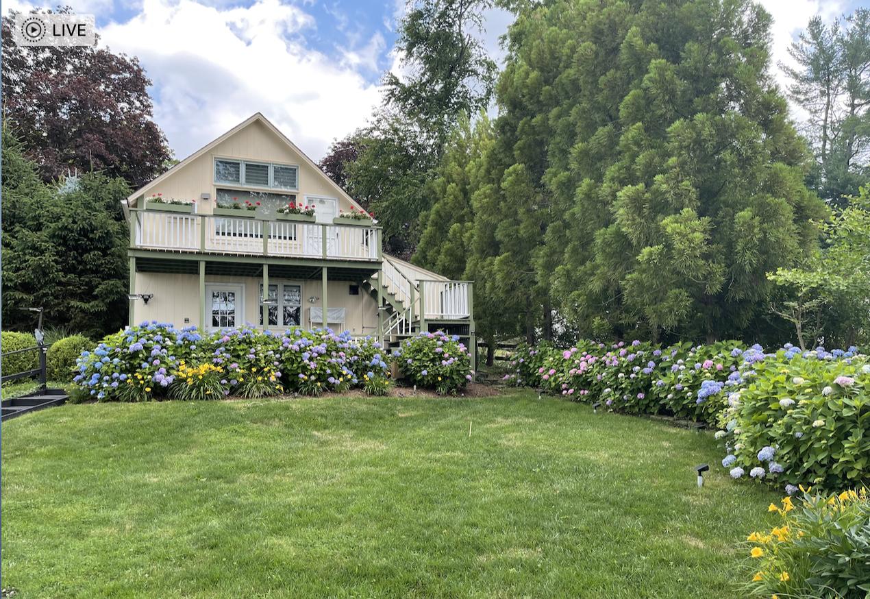草是自己家的绿,花是自己家的香_图1-46
