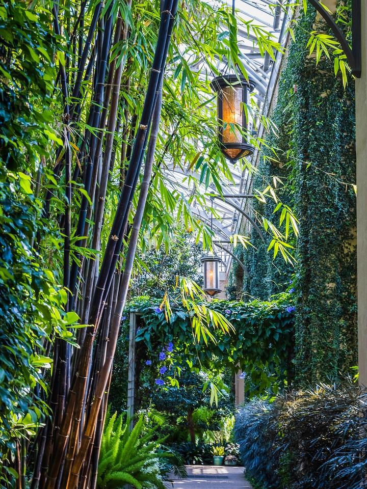 宾州长木公园,室内花园_图1-20