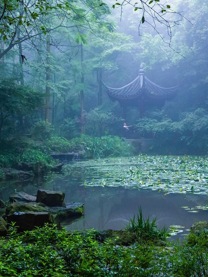 杭州虎跑,石雕虎跑_图1-12
