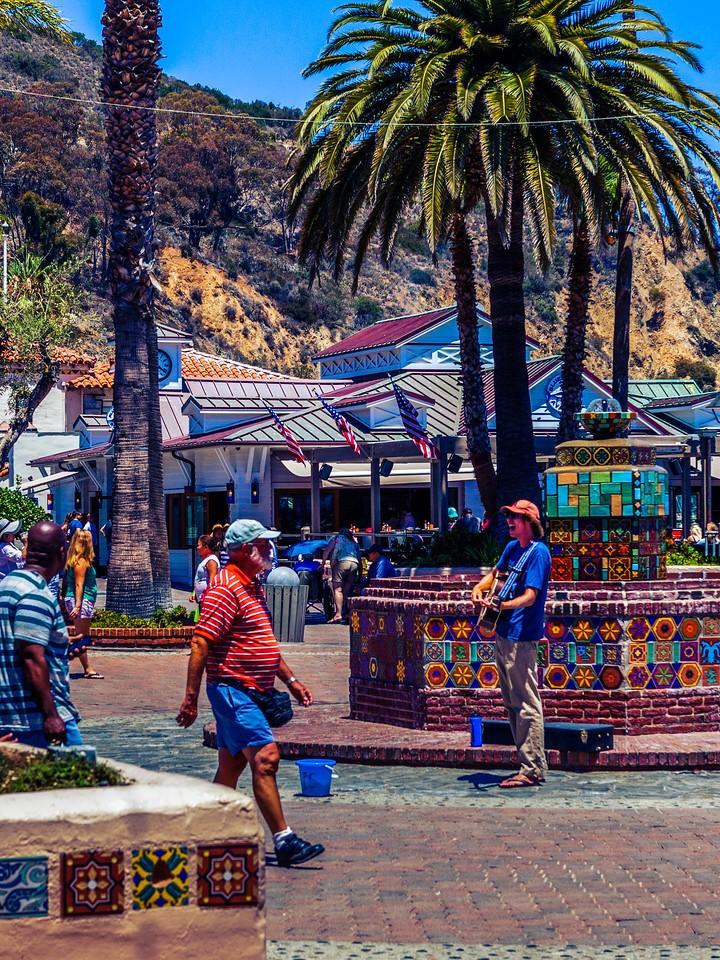 加州圣卡塔利娜岛(Santa Catalina Island),小岛街景_图1-14