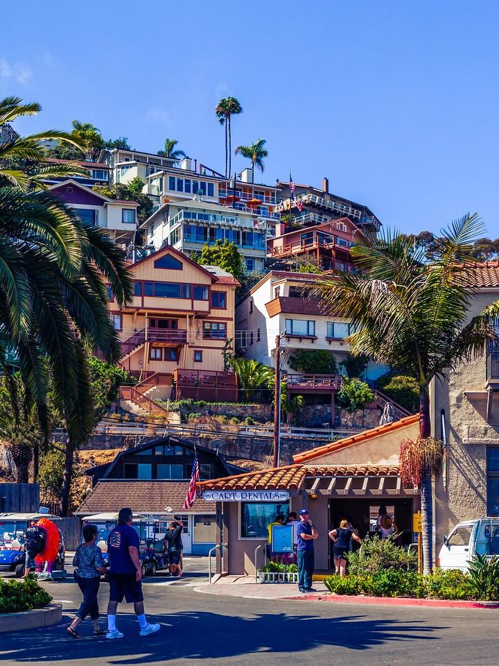 加州圣卡塔利娜岛(Santa Catalina Island),小岛街景_图1-15