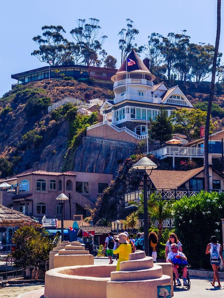 加州圣卡塔利娜岛(Santa Catalina Island),小岛街景_图1-4