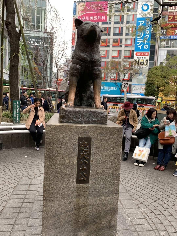 东京的八公!(笨小孩的世界之四十一)_图1-1
