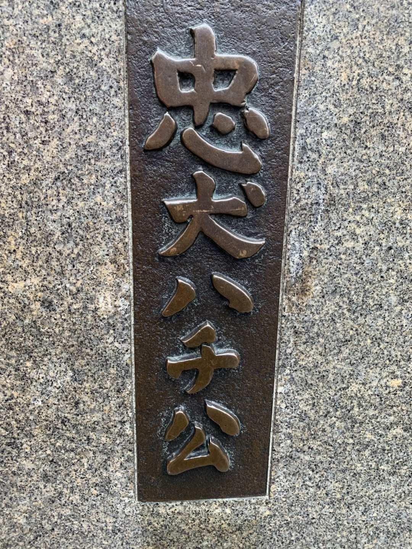 东京的八公!(笨小孩的世界之四十一)_图1-2