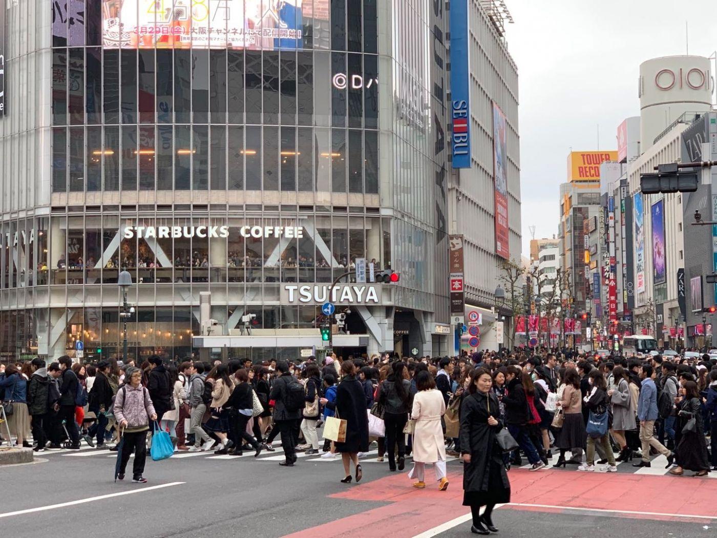 东京的八公!(笨小孩的世界之四十一)_图1-5