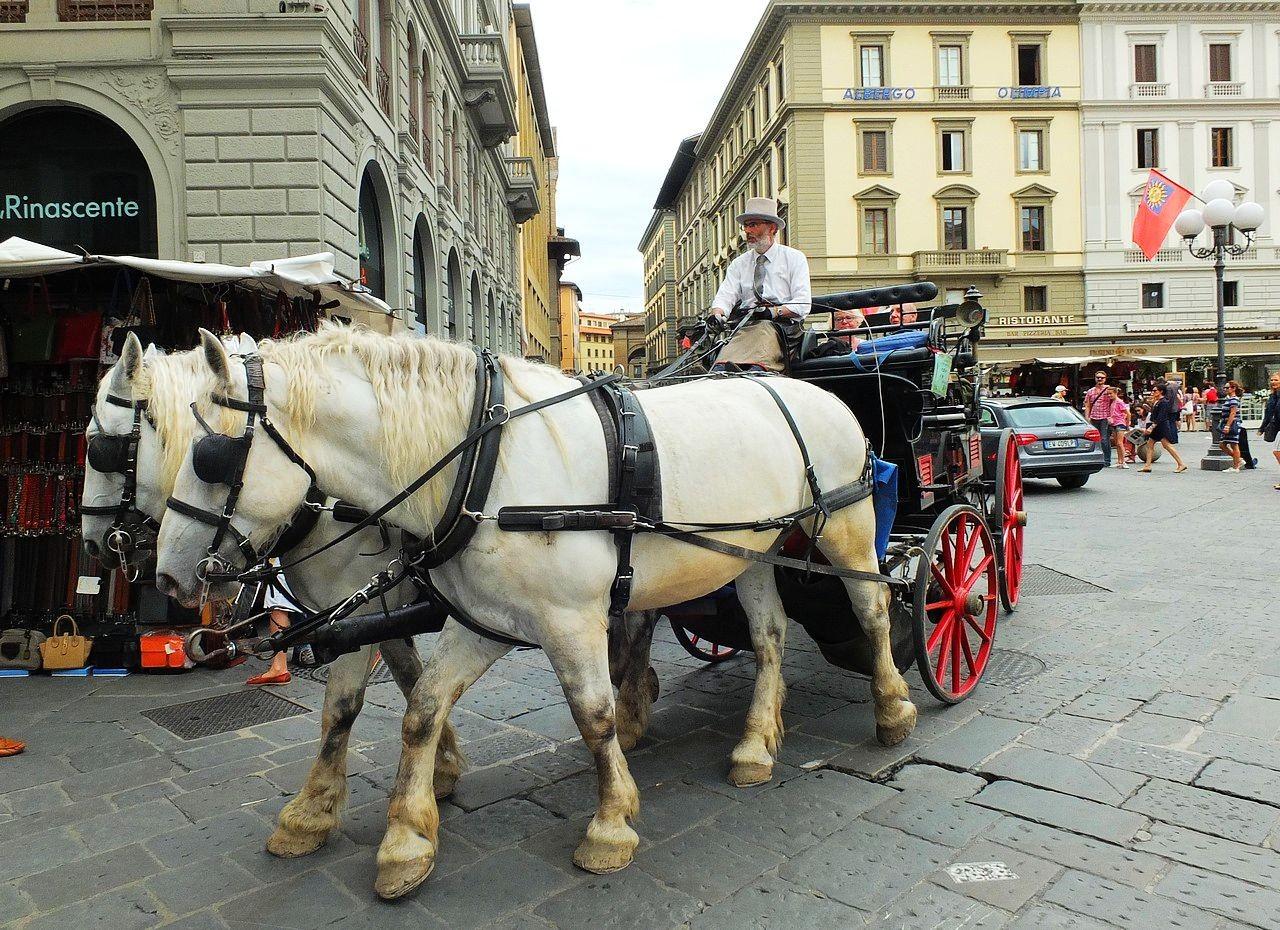 美丽的托斯卡纳城市.佛罗伦萨 2_图1-3
