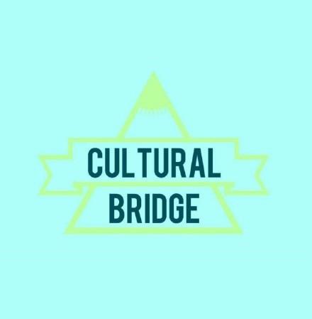 美国V视:青少年组织文化桥在疫情期间提供英语公益课程_图1-1