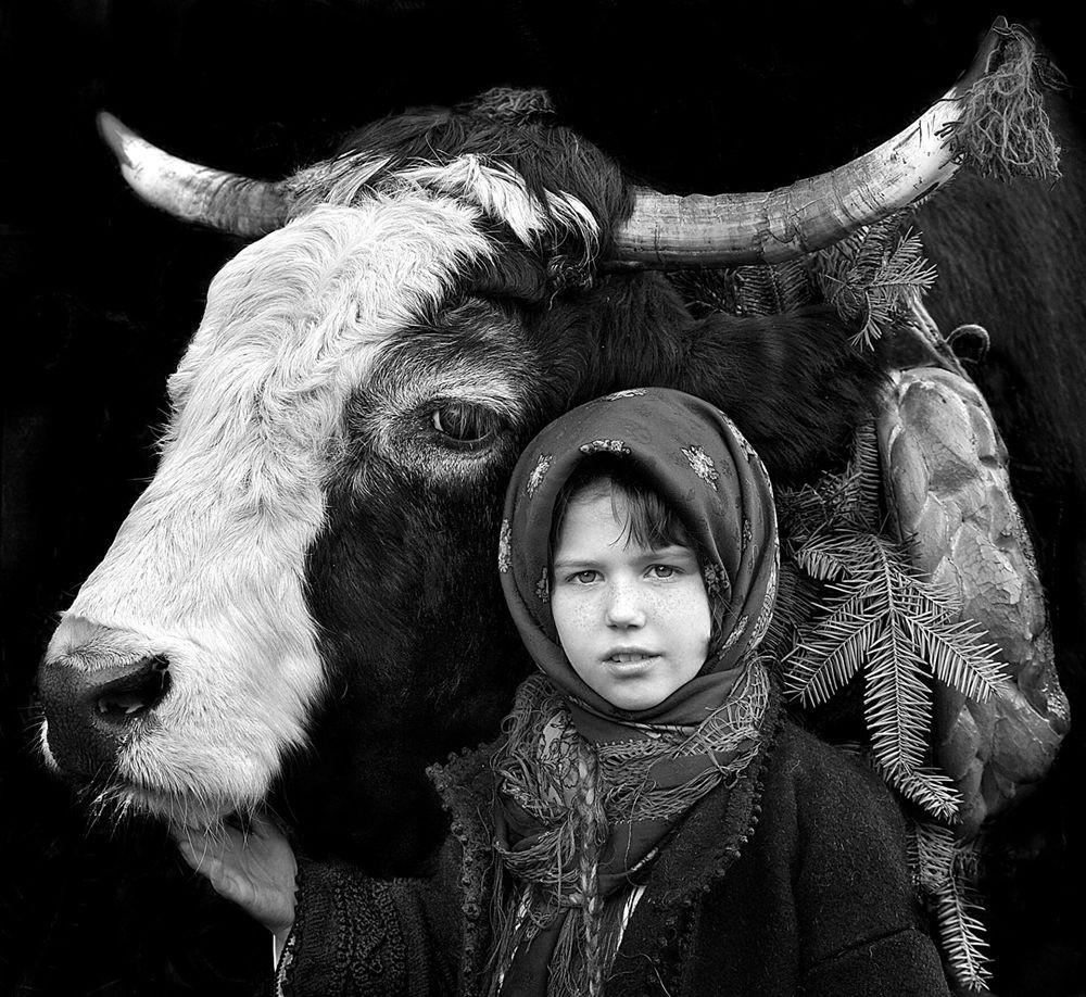 特兰西瓦尼亚的牧羊区_图1-3