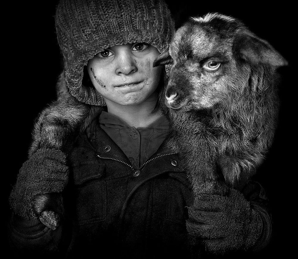 特兰西瓦尼亚的牧羊区_图1-10