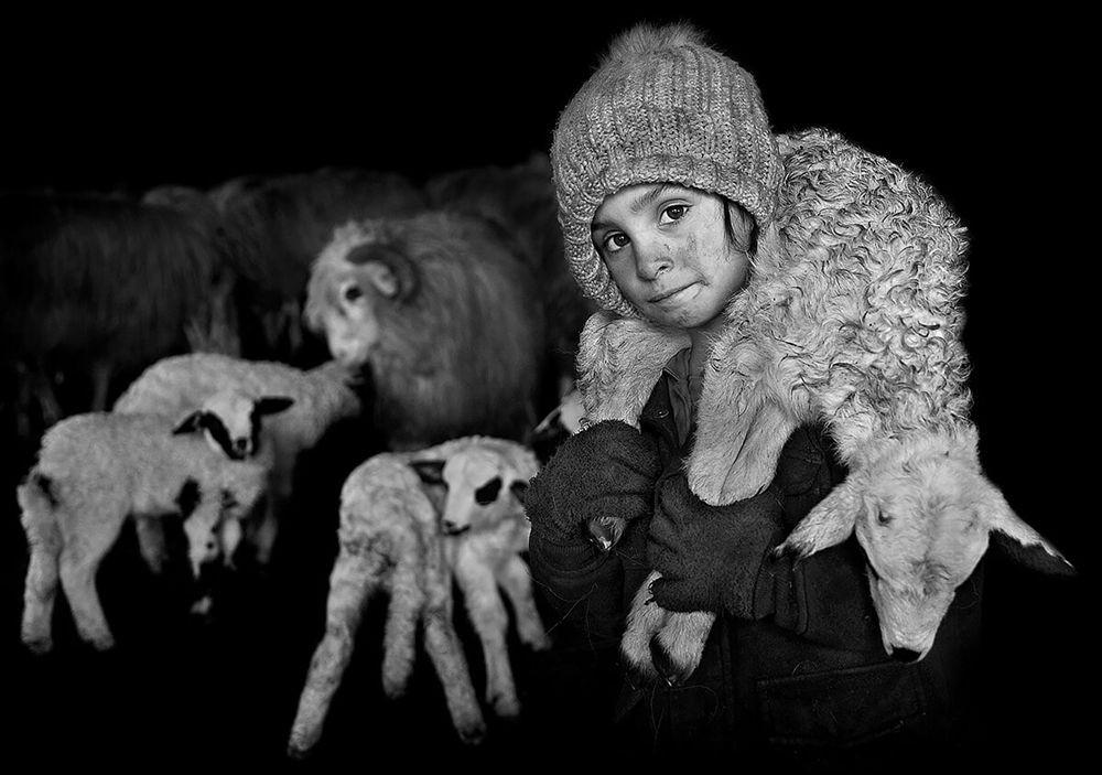 特兰西瓦尼亚的牧羊区_图1-11