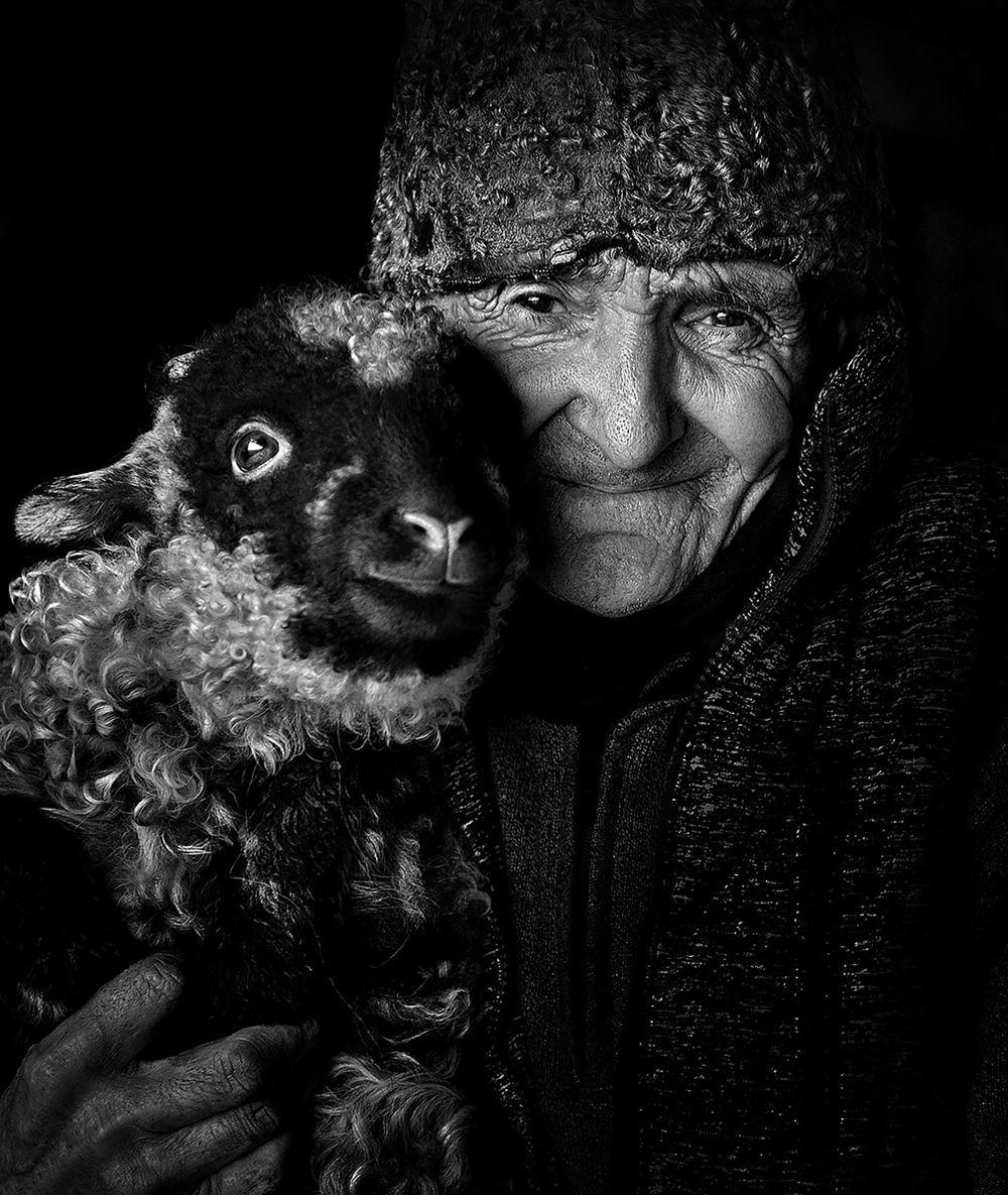 特兰西瓦尼亚的牧羊区_图1-15