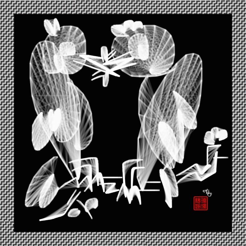 【写意花鸟】鸟蚊哈_图1-6