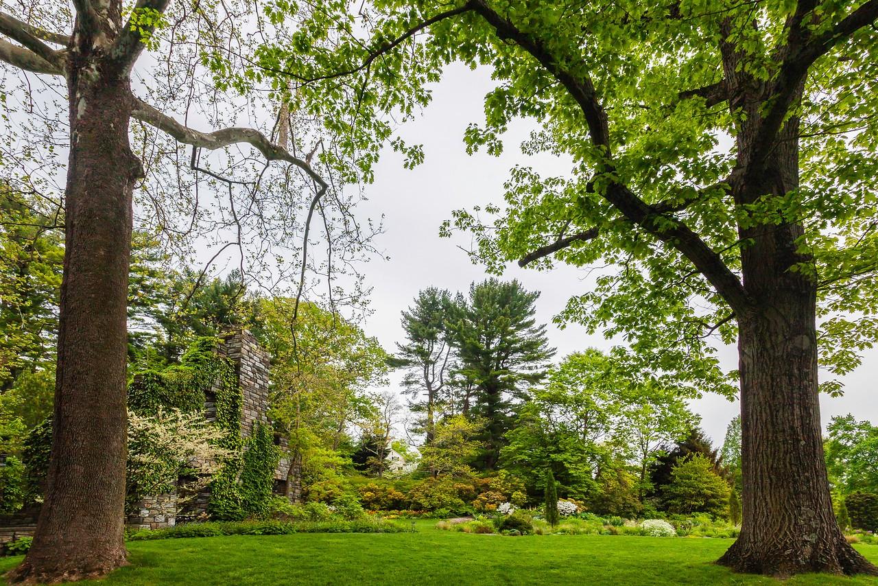 Chanticleer花园,树上盆景_图1-4