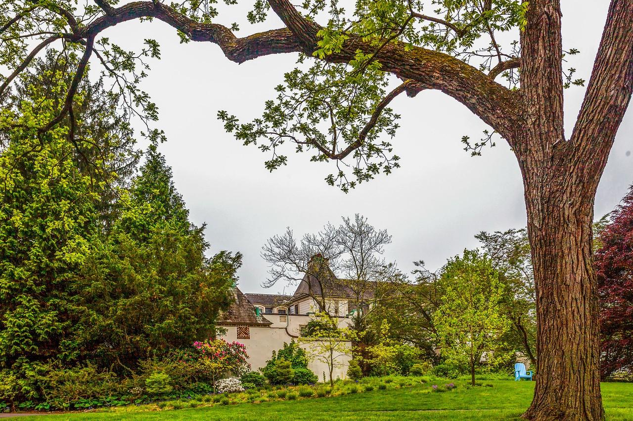 Chanticleer花园,树上盆景_图1-11