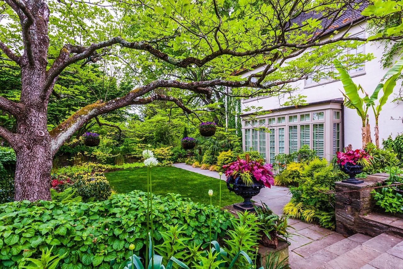Chanticleer花园,树上盆景_图1-13