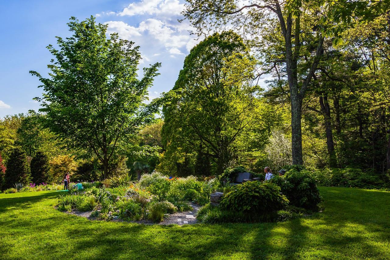 Chanticleer花园,树上盆景_图1-17