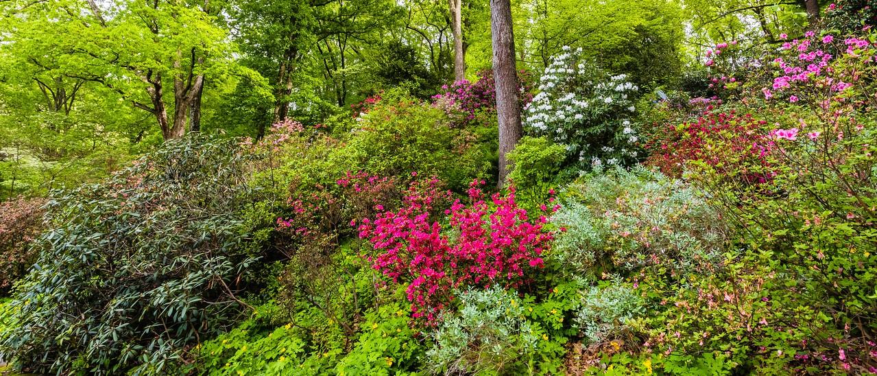 滨州詹金斯植物园(Jenkins Arboretum),一步一景_图1-11